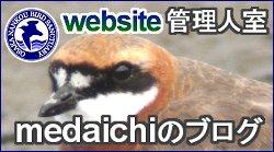 medaichi_blog